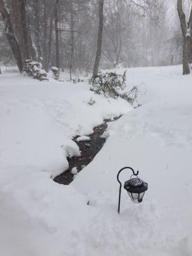 Creek flowing in the snow