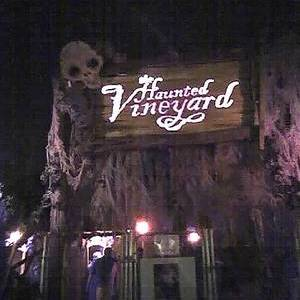 Haunted Vineyard review