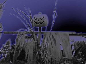 haunted house on punta del copy