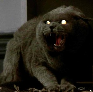 PET SEMATARY: The Zombie Cat from Hell