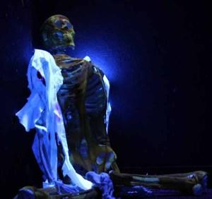 Haunted Shack Skeleton blacklight 2010 crop