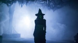 Besides returning for the Trick-r-Treat maze, the iconic Green Witch will haunt the Calico Mine ride for Halloween 2014.