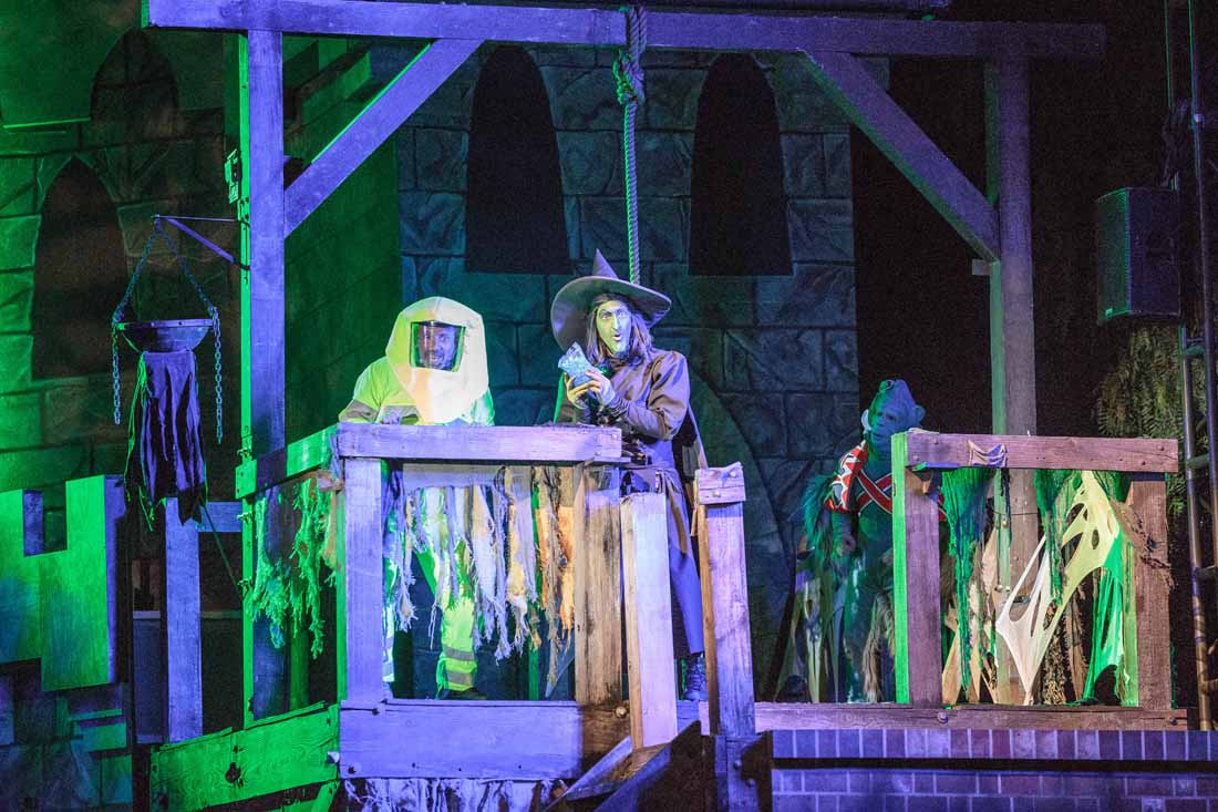 Knott's Halloween Haunt:  The Hanging Green Witch