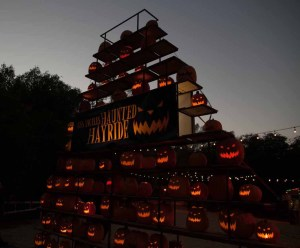 Los Angeles Haunted Hayride jack o lanterns 2 photo by Brad Heaton