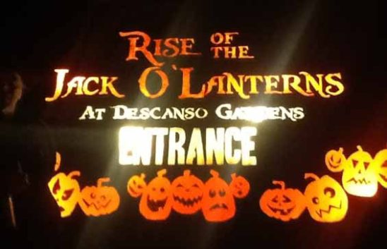Rise of the Jack O'Lanterns 2014: