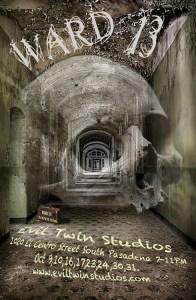 Evil Twins WARD 13 Poster 2015