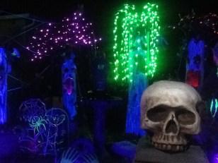 Spider-Lights: Skull