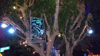 boney-island-2016-sign-in-tree