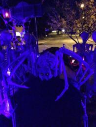 coffinwood-cemetery-2016-skeleton-spider