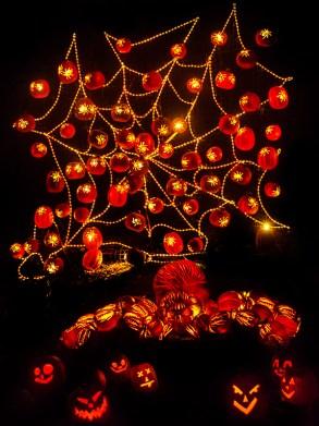 Rise of the Jack O'Lanterns rise_spider_web