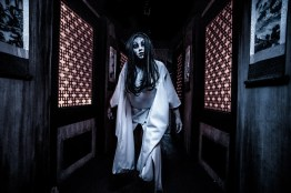 Shadowlands: Haunted Geisha