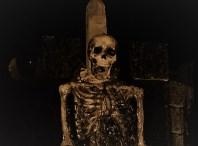 Beware the Dark Realm 2018 skeleton