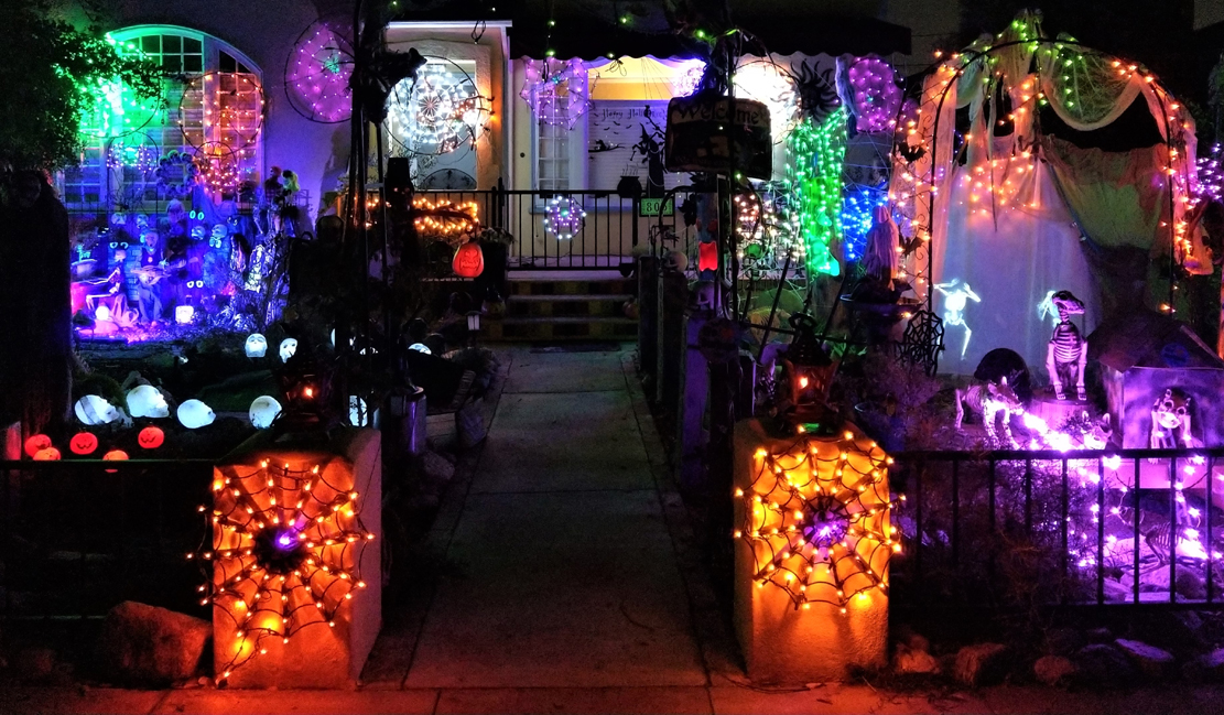 Spider Lights 2018