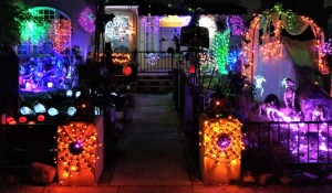 Spider Lights 2018
