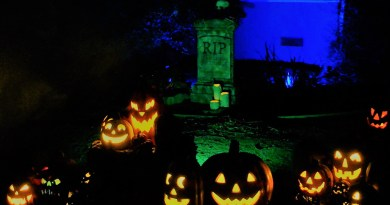 Van Nuys Yard Haunts House of Boos Jack O'Lanterns