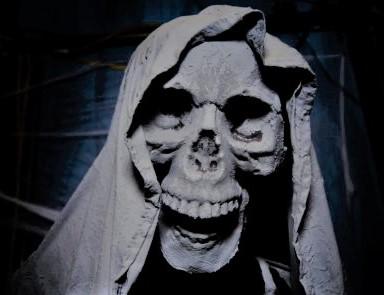 Realm of Shadow Halloween Home Haunt