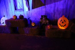 Terror in Train Town Halloween 2019 Review