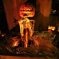 Photo Galleries: East Valley Yard Haunts