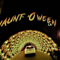 Haunt 'O Ween Review: A Delightful Halloween Drive-Through