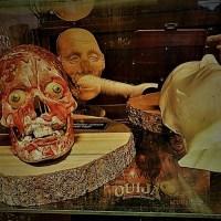 Mystic Museum's New Camp Horror