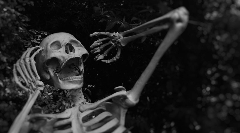 Halloween screaming skeleton