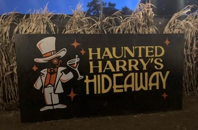 Haryry's Haunted Hideaway - VIP bar
