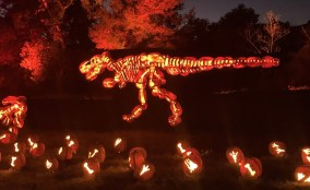 Nights of the Jack dinosaurs