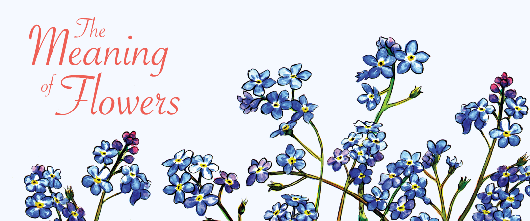 The Meaning of Flowers