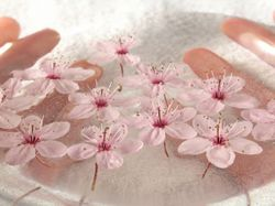 Blossoms_in_water