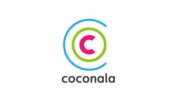 ココナラで短期間で資金調達して副業で稼ぐ方法