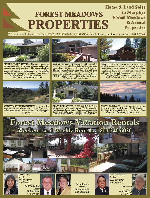The Latest Listings From Forest Meadows Properties