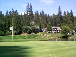 Sequoia Woods Men's Club Season Results