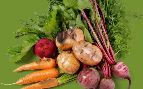 FRINGE REVIEW: The Vegetables!