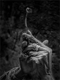 Betende Hände, Hans-Jürgen Killich