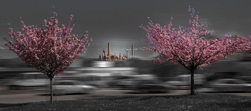 Frühling, Peter Müller