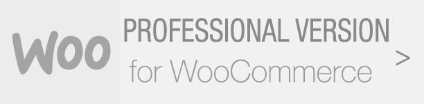 WordPress Lucky Wheel - 5