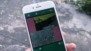 4 Best Apps to Add Multiple Videos in One Screen on Instagram