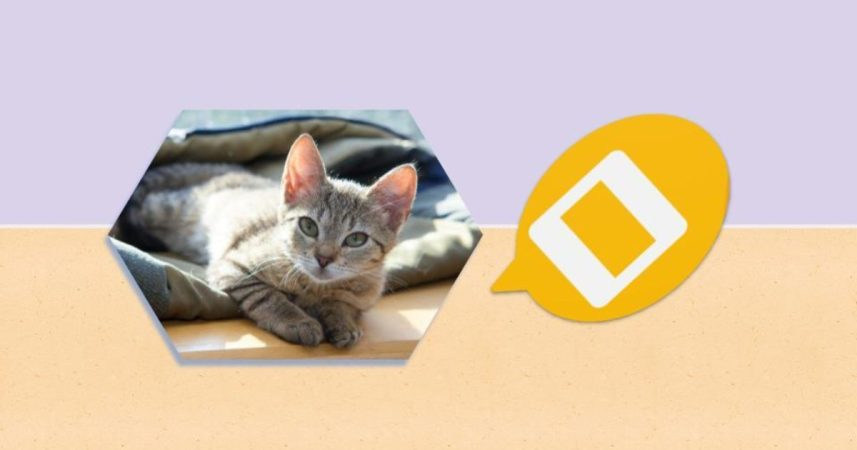 How to Fit an Image in Shape on Google Slides on Mobile and PC