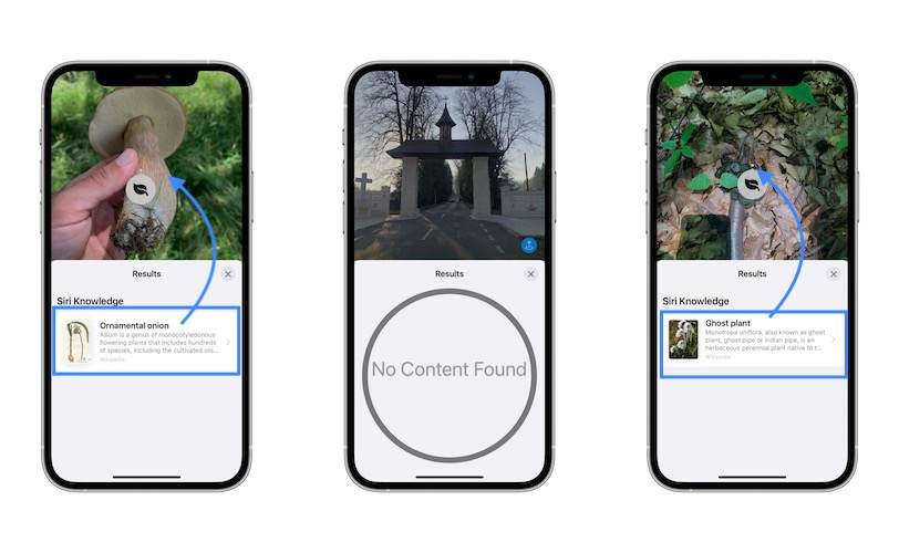 visual search does not work