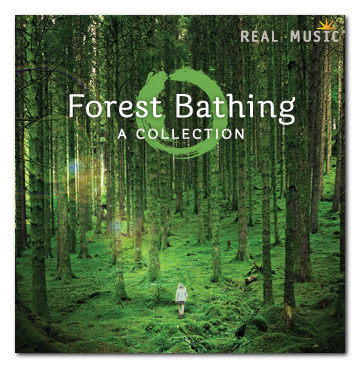 new-age-music-forest-bathing