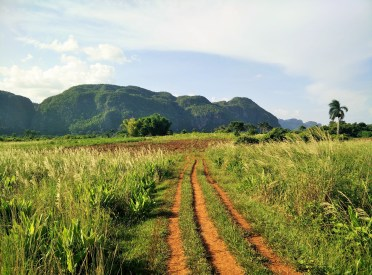 The walking trail through Valle de Vinales