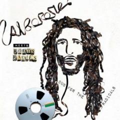 Alborosie – Alborosie Meets Roots Radics Dub For The Radicals (2019) Mp3