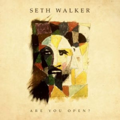 Seth Walker – Are You Open (2019) Mp3