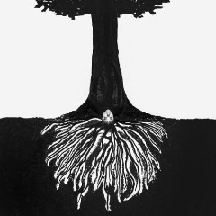 Eryn Allen Kane – A Tree Planted By Water (2019) Mp3