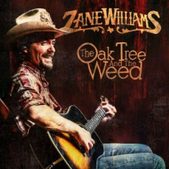 Zane Williams – The Oak Tree And The Weed (2019) Mp3