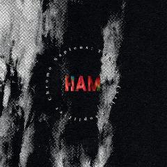 Ham – Chromo Sapiens Tonlist Fyrir Shoplifter (2020) Mp3