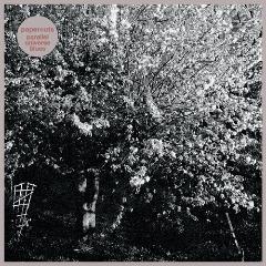 Papercuts – Parallel Universe Blues (2018) Mp3