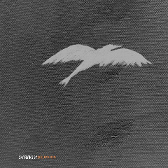 Sky Flying By – Re Routed (2018) Mp3