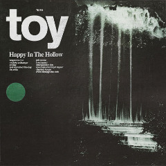 Toy – Happy In The Hollow (2019) Mp3