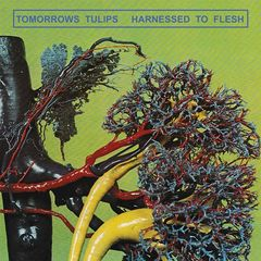 Tomorrows Tulips – Harnessed To Flesh (2018) Mp3